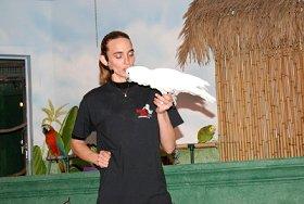 Animal Gardens - Bird Show