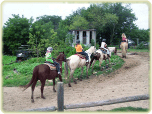 Horses_Trail_Riding_A
