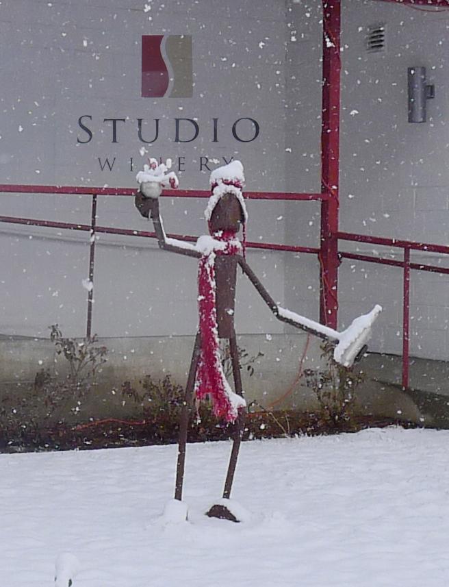 Snow-cork-dork