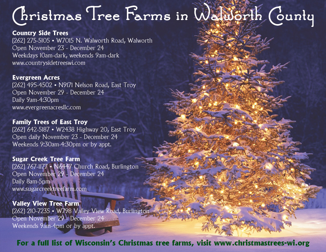 christmas tree farms 2013 - How To Start A Christmas Tree Farm