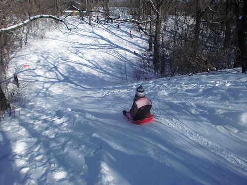 Image result for sledding