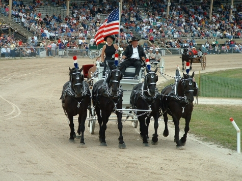 Walworth County Fair 2