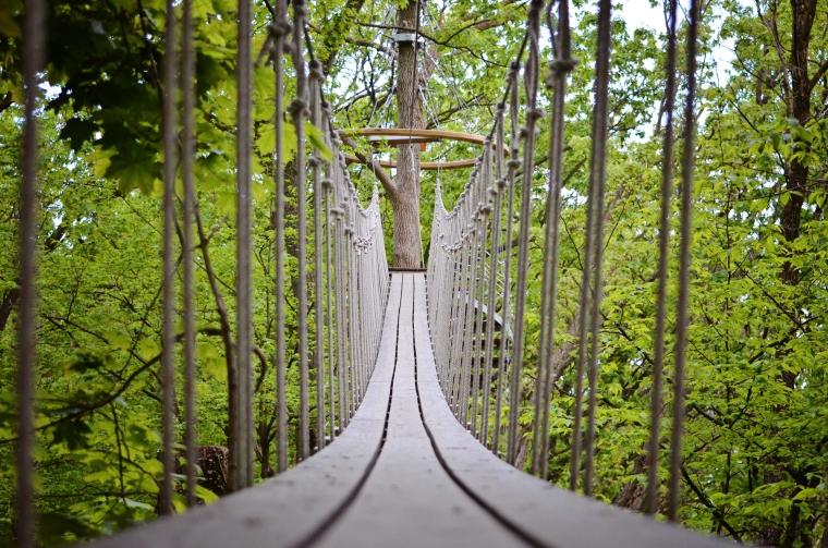 Sky Bridge at Lake Geneva Canopy Tours, Lake Geneva, Walworth County, WI.