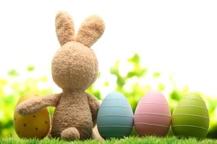 stuffed bunny with eggs