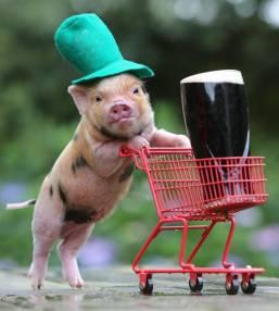Hogs&Kisses_StPatricksSocial.jpg