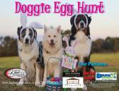 Doggie Egg Hunt